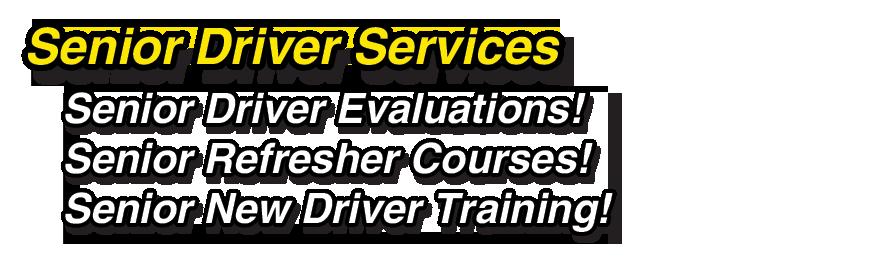 driver license services